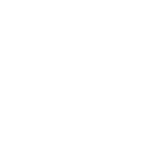 Sighthound Video
